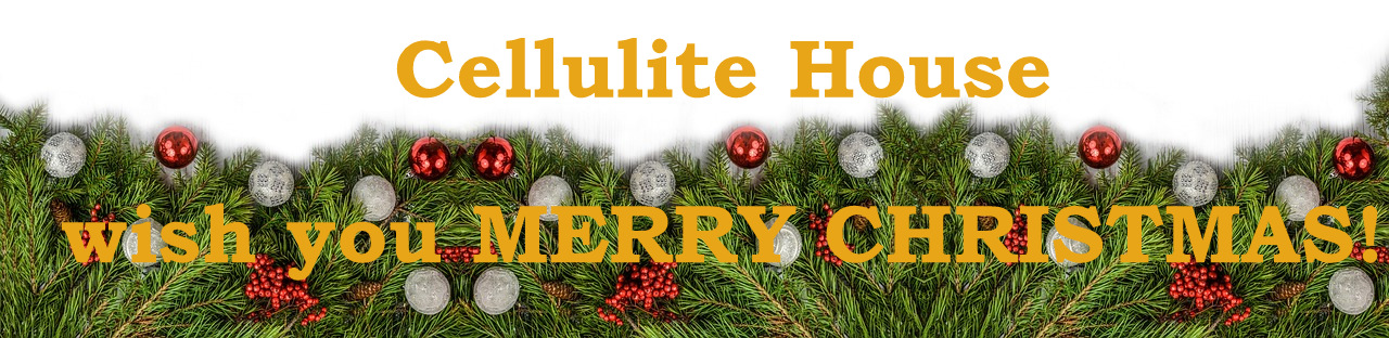 Cellulite House wish Merry Christmas